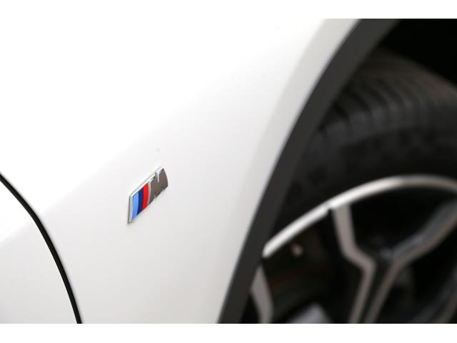sDrive 18i MスポーツX 19AW ACC ETC(10枚目)