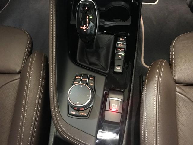 xDrive 18d MスポーツXモカ革ハイラインデモ車(10枚目)