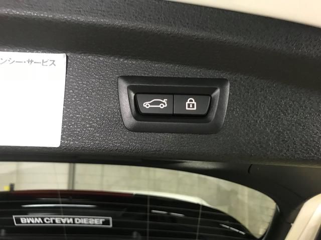 xDrive 18d MスポーツXモカ革ハイラインデモ車(19枚目)