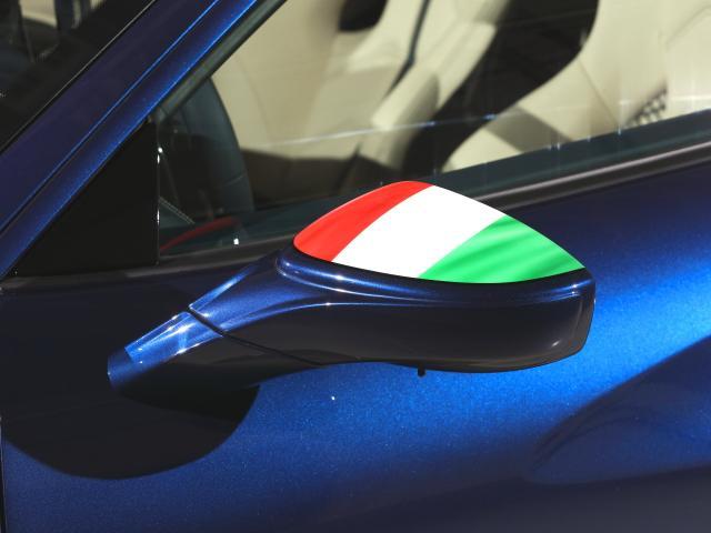 F1 DCT CORNES芝 認定中古車 レーシングシート(17枚目)