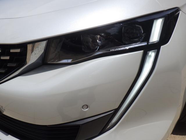 ヘッドライトにはLEDが採用され、明るさや消費電力共に高効率になります。ライオンの牙をイメージしたLEDのポジションランプが勇ましさを感じさせます。