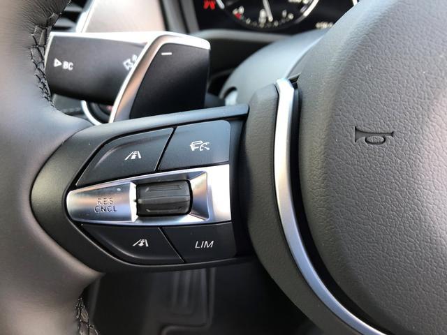 xDrive 20i MスポーツX黒革ハイライン当社デモカー(17枚目)
