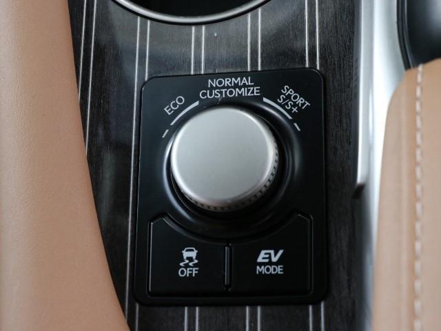 RX450h バージョンL(12枚目)
