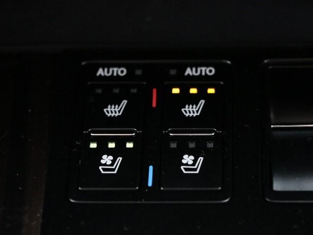 RX300 バージョンL(12枚目)