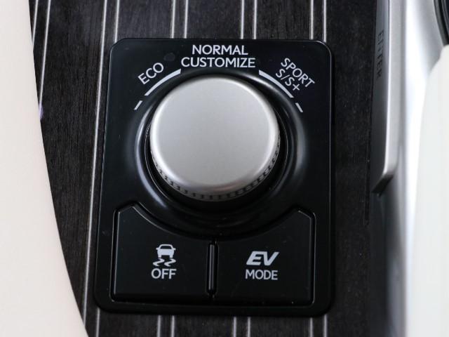 RX450h バージョンL 革シート ワンオーナー(13枚目)