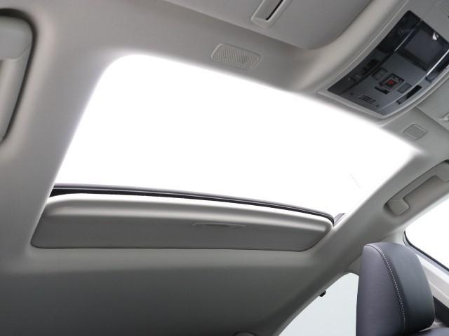 ES300h バージョンL サンルーフ 本革シート(14枚目)