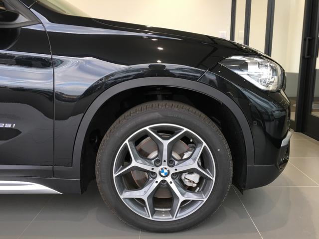 xDrive 25i xライン(6枚目)