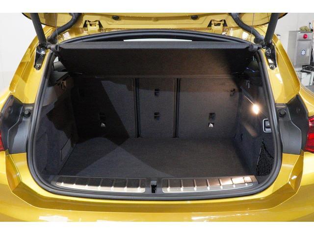 xDrive 20i MスポーツX ハイラインPデビューP(8枚目)