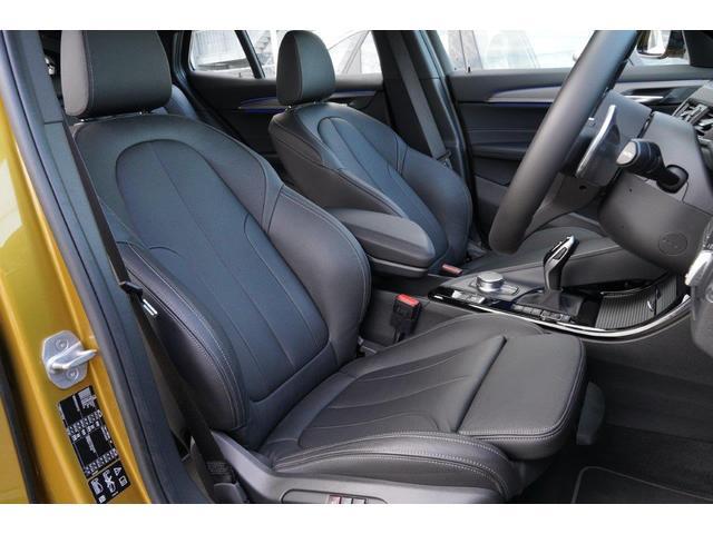 xDrive 20i MスポーツX ハイラインPデビューP(9枚目)
