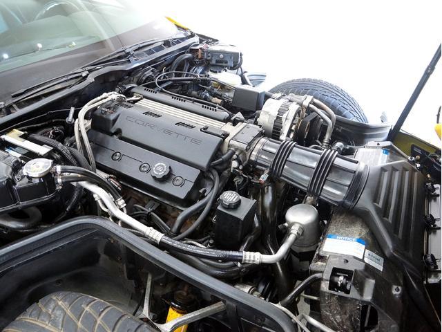 ベースグレード 40周年記念モデル D車 エックラー(13枚目)