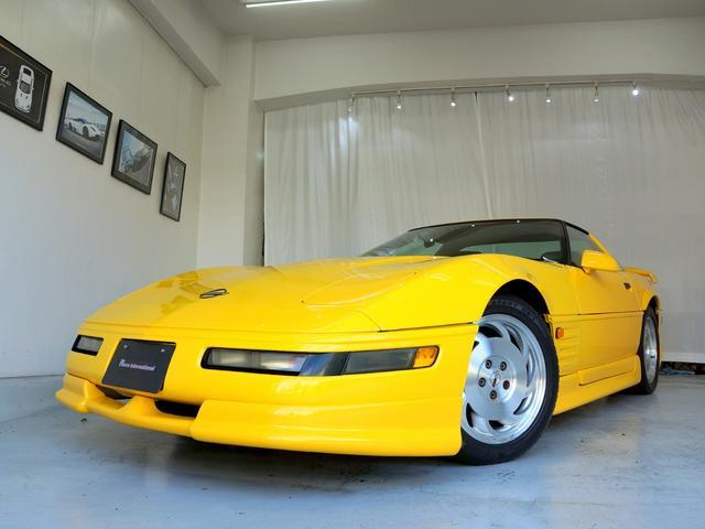 ベースグレード 40周年記念モデル D車 エックラー(20枚目)