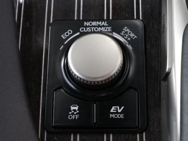RX450h バージョンL サンルーフ 革シート(14枚目)