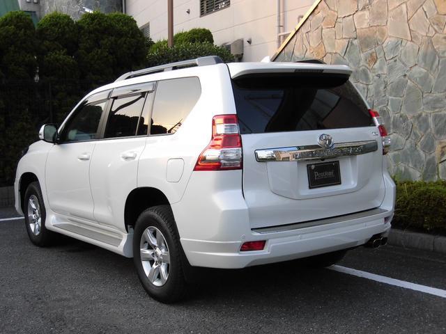 TX Lパッケージ 4WD 1オーナー 記録簿付 サンルーフ(19枚目)