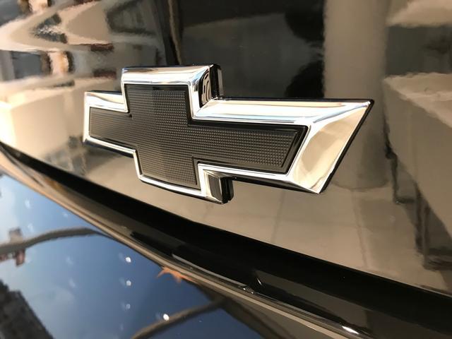 LTRS新車未登録車2019ブラック/アドレナリンレッド(6枚目)