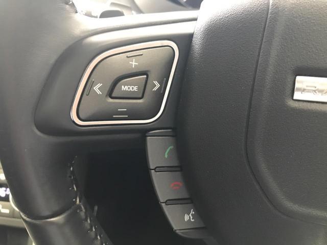 HSE 認定中古車 ガラスルーフ レザーシート MERIDIANサウンド サラウンドカメラ 衝突被害軽減ブレーキ HIDヘッドライト ブラインドスポットモニター パワーバックドア メモリー機能付パワーシート(38枚目)