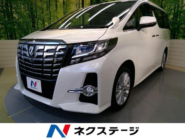 トヨタ 2.5S 新車未登録 クリアランスソナー 両側パワスラ