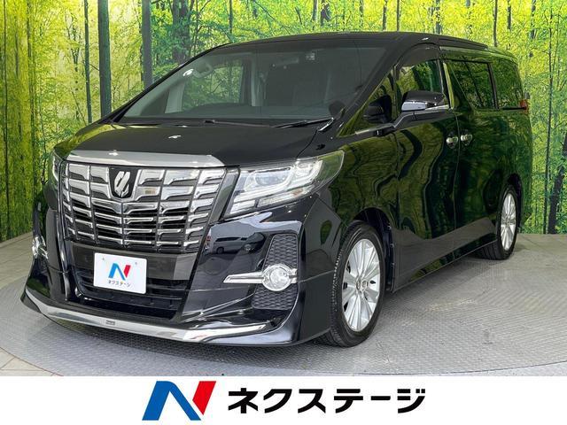 トヨタ 2.5S BIG-X11型ナビ 両側電動ドア ETC 禁煙車