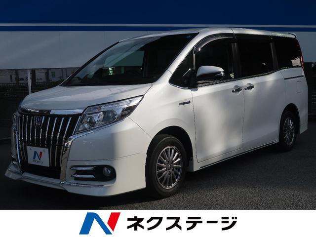 トヨタ ハイブリッドGi BIGX10型ナビ ダイナミックエアロ