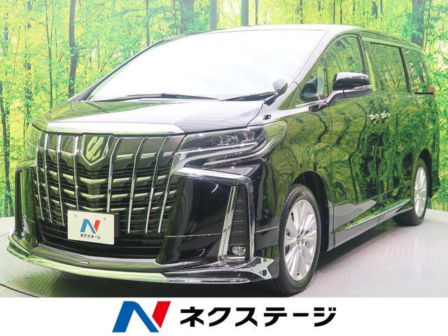 トヨタ 2.5S モデリスタエアロ 両側電動ドア レーダークルーズ