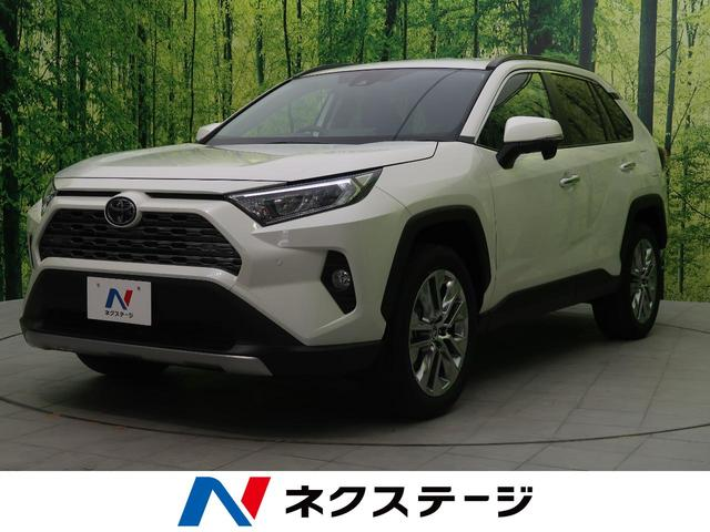 トヨタ G Zパッケージ 新品SDナビ 登録済未使用車 衝突軽減