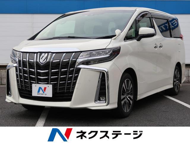 トヨタ 2.5S Cパッケージ BIG-X11型ナビ フリップダウン