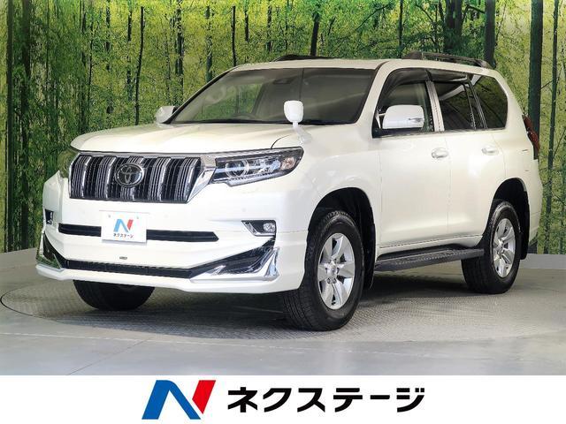 トヨタ TX 4WD ムーンルーフ モデリスタエアロ SDナビTV