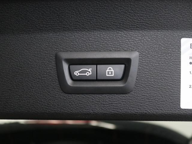 xDrive 25i xライン ハイラインPKG黒革ACC(18枚目)