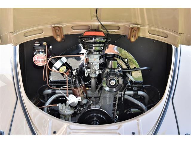 1956y OVAL WINDOW(18枚目)