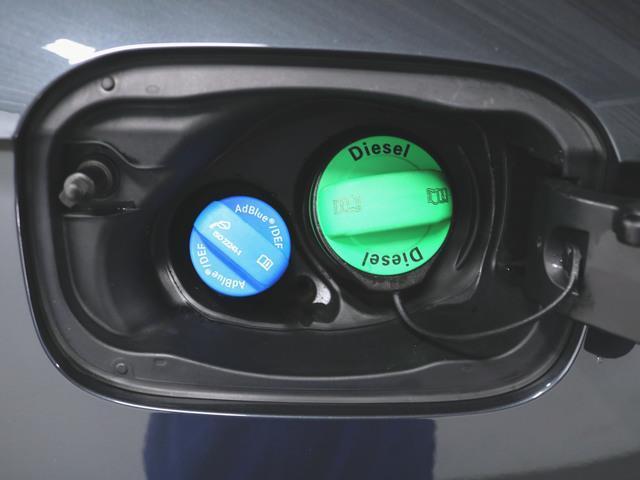 40 TDI クワトロ スポーツ エアサスペンション装着車 アシスタンスパッケージ マトリクスLEDパッケージ ラグジュアリーパッケージ 1ヶ月保証 新車保証(20枚目)