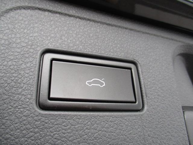 新型TDIハイライン VW純正ナビ レザーシート 電動ゲート(10枚目)