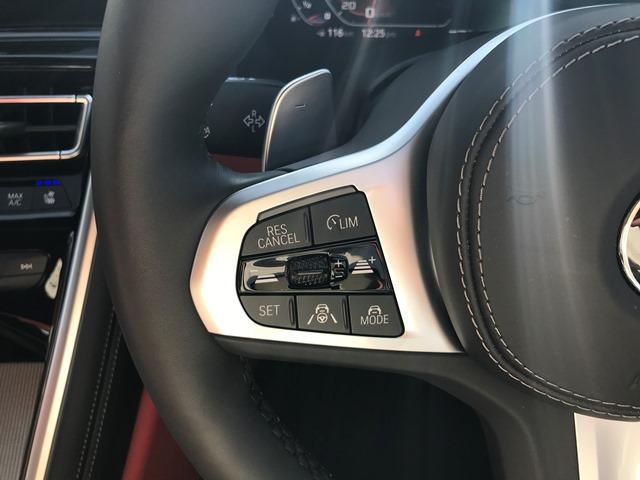 M850i xDriveクーペ Bowers&Wilkinsダイヤモンドサラウンドサウンドシステム カーボンルーフ メリノレザーコンビシート ベンチレーションシート シートヒーティング HDDナビ地デジ 電動トランク ソフトクローズ(60枚目)
