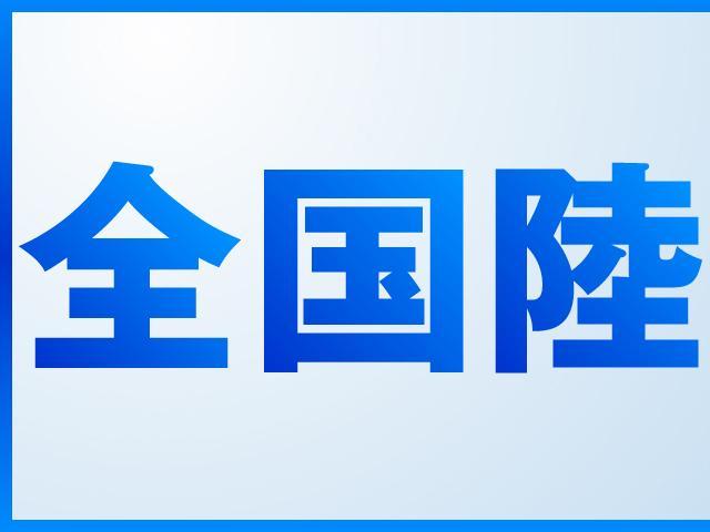 sDrive20iファッショニスタ 純正HDDナビキセノン(2枚目)