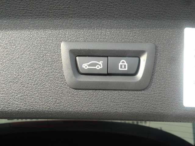 xDrive 25i xライン ACC LED バックカメラ(15枚目)