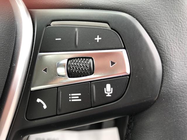 320i 弊社デモカー プラスPKG コンフォートPKG 黒革 ハンドルサポ 軽減ブレーキ 純正HDDナビ バックカメラ LEDヘッドライト ミラーETC(30枚目)