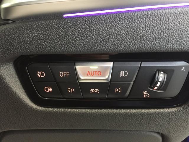 320d xDrive Mスポーツ デビューパッケージ コンフォートパッケージ ブラックレザーシート シートヒーター 19インチアルミホイール 電動トランクゲート LEDヘッドライト バックカメラ HiFiスピーカー 純正HDDナビ(30枚目)