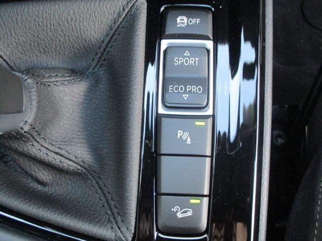 xDrive 20i MスポーツX 弊社デモカー 19アルミ(19枚目)