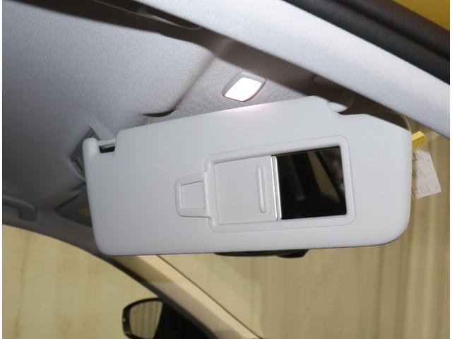 TDI スタイルデザインパッケージ Discovermedia Bカメラ ACC LEDヘッド 試乗車(23枚目)