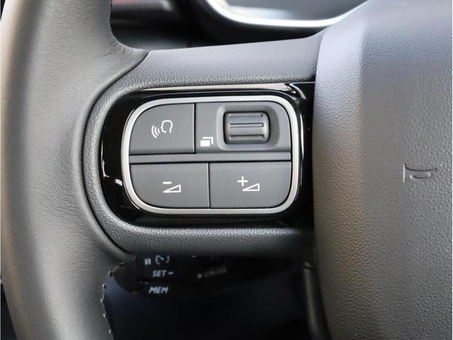 シャイン メーカー新車保証 禁煙 インテリジェントハイビーム カープレイ対応 バックカメラ 衝突被害軽減ブレーキ クルーズコントロール コネクテッドカム(33枚目)