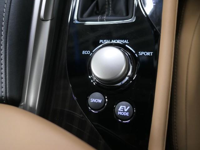 GS300h Iパッケージ LEXUS認定中古車(17枚目)