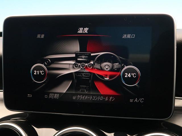 C180アバンギャルド RSP 純正ナビ/TV バックカメラ(10枚目)