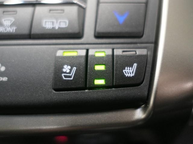 NX200t Fスポーツ LEXUS認定中古車(17枚目)