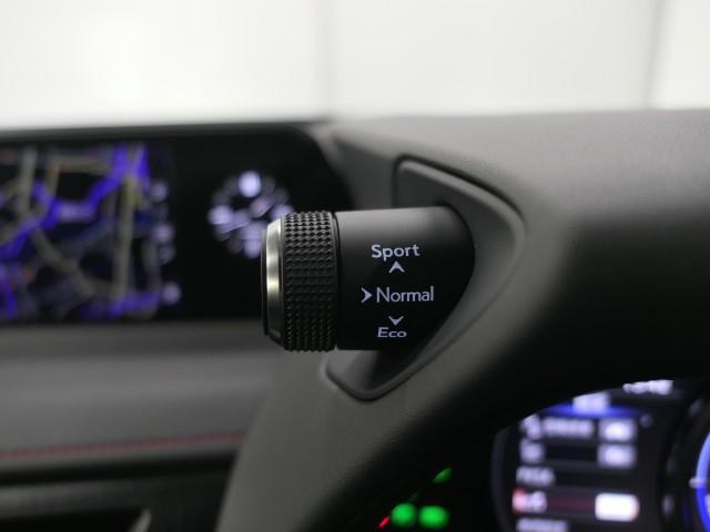 「レクサス」「UX」「SUV・クロカン」「大阪府」の中古車14