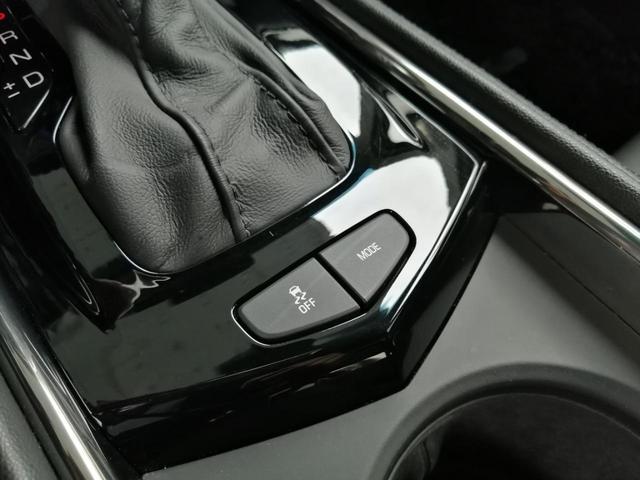 ラグジュアリー 禁煙車 ブラックレザーシート メモリ付電動シート シートヒーター スマートキー バックカメラ クルーズコントロール キセノンライト バンパーセンサー ステアリングヒーター レーンキープアシスト(38枚目)