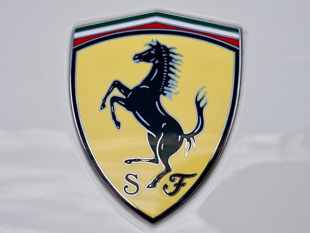 F1 右H D車 ビアンコ/ロッソレザー OP20AW(20枚目)