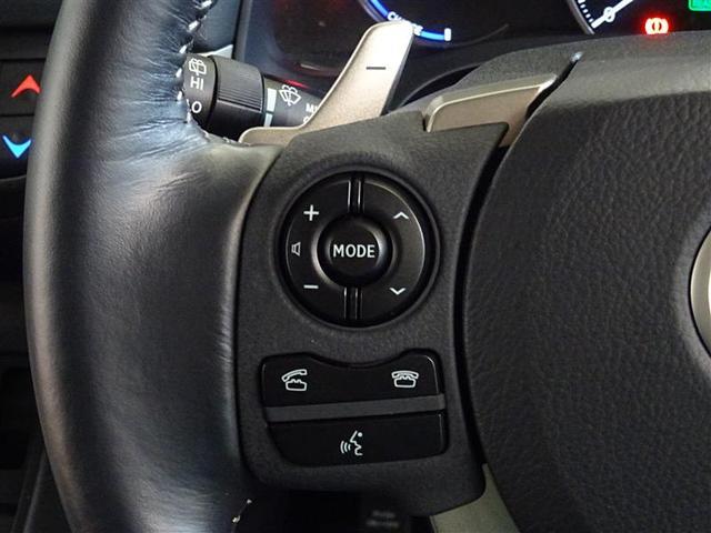 CT200h バージョンC ファブリックシート LED(11枚目)