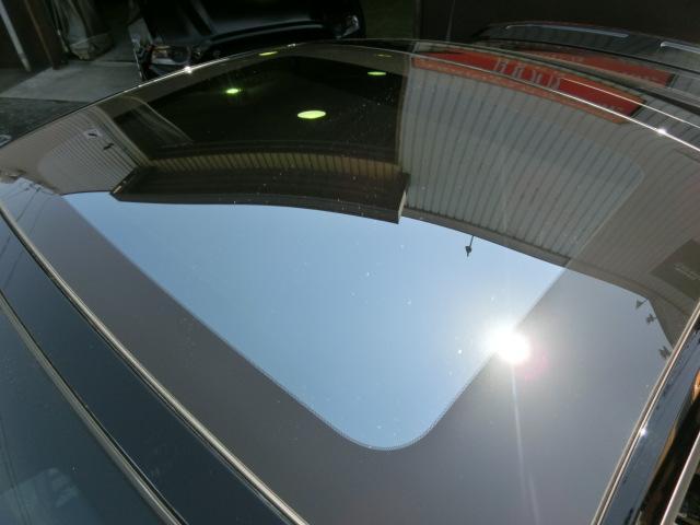 V8 GTクーペ グラスルーフ ザ ブラック 35台限定車(49枚目)