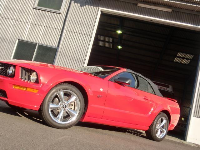 V8 GTコンバーチブル プレミアム 正規ディーラー車(12枚目)