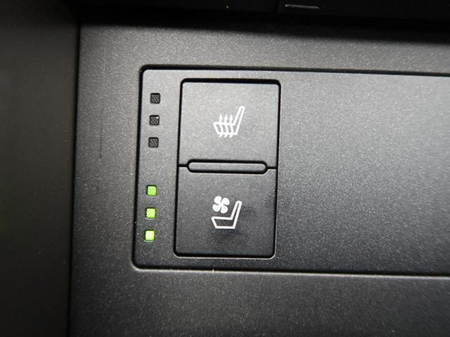 IS300h バージョンL 黒革シートエアコン LEDヘッド(7枚目)