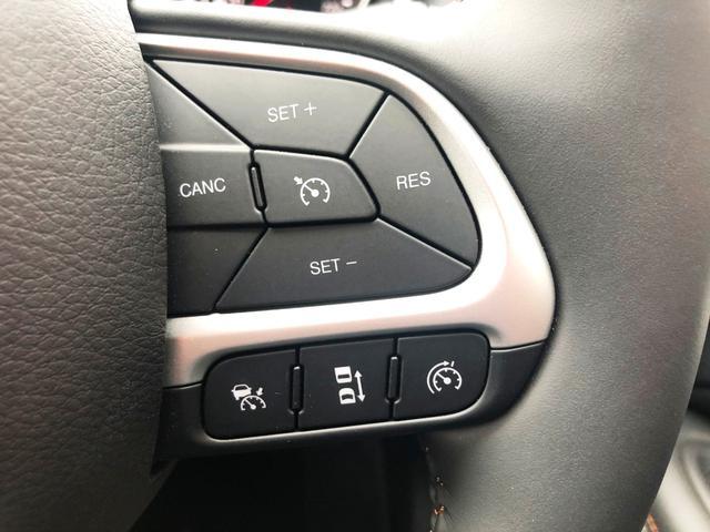アダプティブクルーズコントロール機能も搭載!車間距離を一定に保ち追従走行をしてくれます!