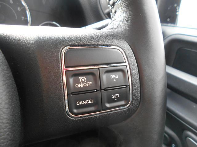 スポーツ 1オーナー ドライブレコーダー クルコン キャリア(15枚目)